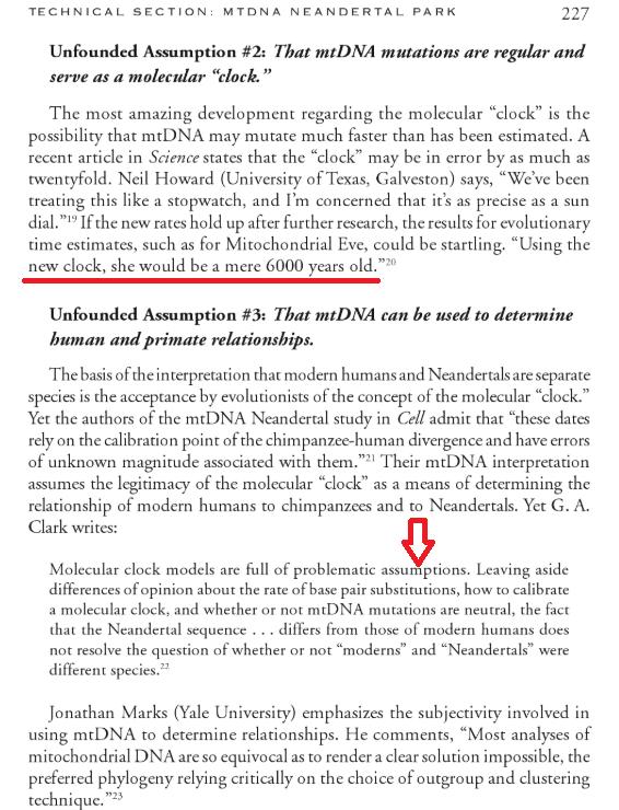 MitochondrialEve_Lubenow